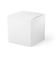 white box on white background for creative design vector image