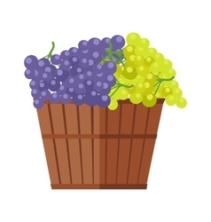 Wooden Barrel with Bunches of Wine Grape vector