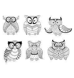 Decorative colorless owls and cute owlets vector image vector image