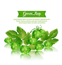 1green hop vector image