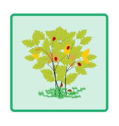 Ladybird on twig card vector