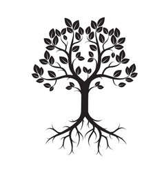 black tree with roots vector image