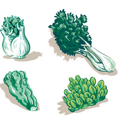 Fresh garden vegetables vector
