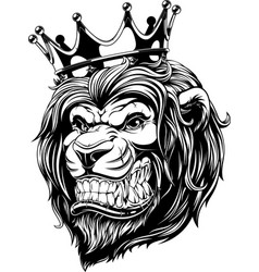 Head a lion in crown vector