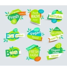 Set of healthy organic food labels vector