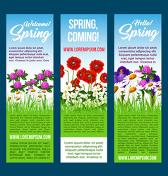 welcome spring banners flowers greetings vector image