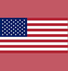 usa flag united states of america national symbol vector image