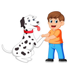 A man shake hands with dalmatian dogs vector