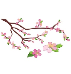 Branch peach with rosy flowers vector