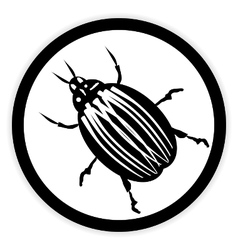 Bug button on white vector image