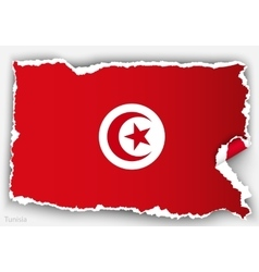design flag tunisia from torn papers with shadows vector image