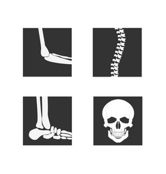 Medical orthopedic of set vector