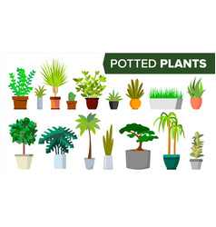 Potted plants set indoor home office vector
