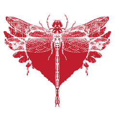 red dragonfly with abstract flying heart vector image