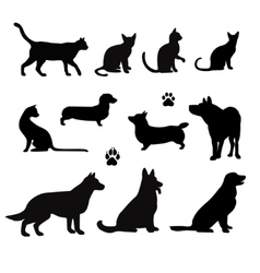 silhouette of pet vector image vector image