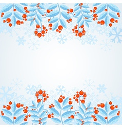 Winter decorative frame with rowan berries vector image