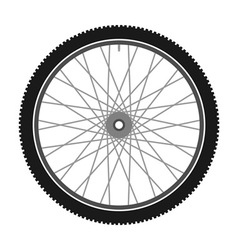 Isolated bicycle wheel vector