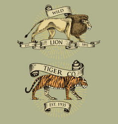 lion and tiger logos emblems or badges with wild vector image