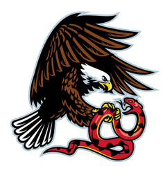 eagle and snake vector image
