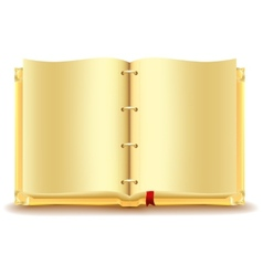 Open gold book vector
