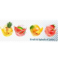 Set of fruit juice splash pineapple strawberry vector
