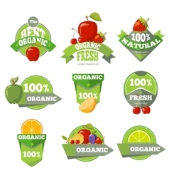 Set of organic natural fruits labels vector image