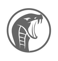snake cobra head logo template isolated vector image