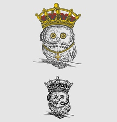 The King Owl Drawing vector