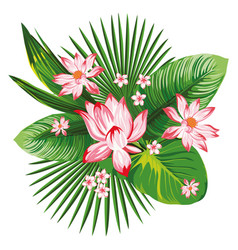 tropical botanical composition pink lotus green vector image