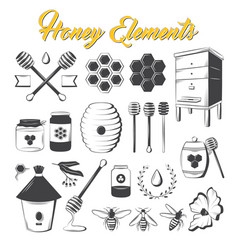 vintage honey elements vector image