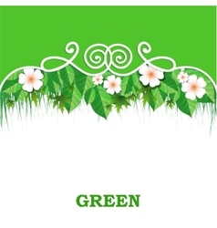 Spring banner with green grass vector image vector image