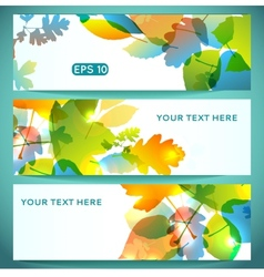 Three Banners of Shiny Colorful Autumn Leaves vector image