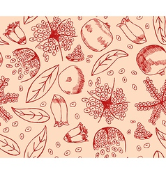 Red Pomegranate Pattern vector image