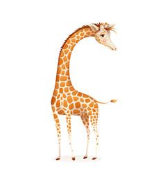 African giraffe animal realistic artistic drawing vector