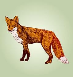 Colored hand sketch fox vector image