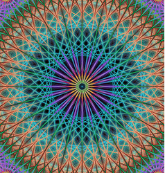 Colorful mandala structure background vector image