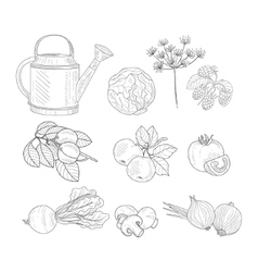 Farm Product Clipart Elements Hand Drawn Realistic vector