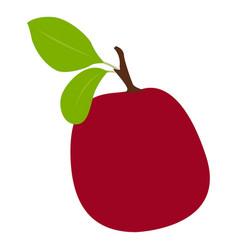 isolated plum fruit vector image