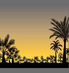 card with palm trees silhouette on sunset vector image