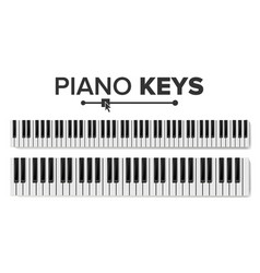 piano keyboards isolated top vector image