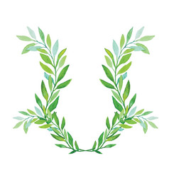 watercolor laurel wreath isolated on white vector image vector image