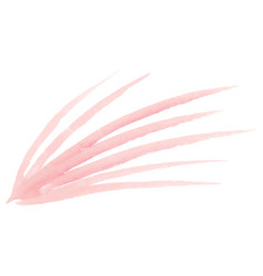 isolated pastel pink leaf on white background vector image