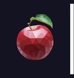 low poly apple print vector image