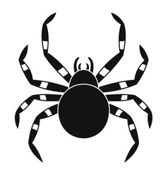 tarantum spider icon simple style vector image
