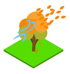 Windy weather icon isometric style vector