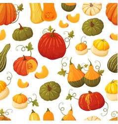 colorful pumpkin pattern vector image