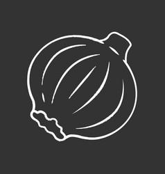 onion chalk icon vector image