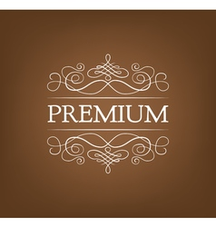 Premium Vintage elements and page decoration vector image