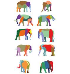 set colorful elephants vector image