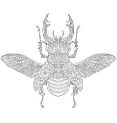 Stag beetle adult coloring page vector
